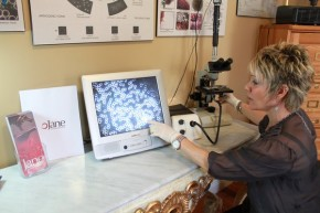 Live Blood Cell Analysis with Jane Durst Pulkys